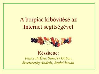 A borpiac kibővítése az  Internet segítségével Készítette: Fancsali Éva, Sárossy Gábor,