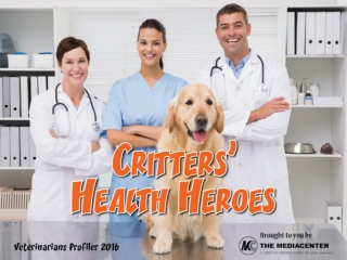 Challenges Affecting Pet Owners: