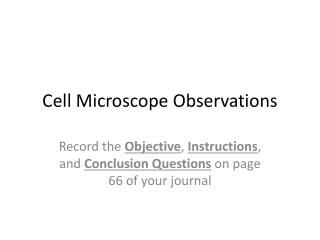 Cell Microscope Observations