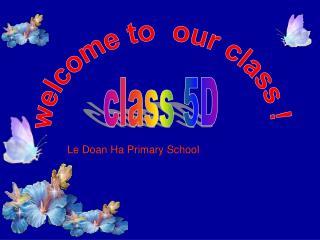 Le Doan Ha Primary School
