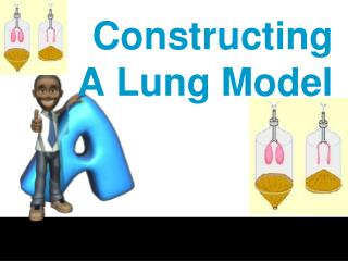 Constructing A Lung Model