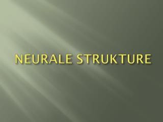 NEURALE STRUKTURE