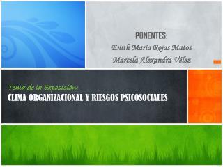 Tema de la Exposici�n : CLIMA ORGANIZACIONAL Y RIESGOS PSICOSOCIALES