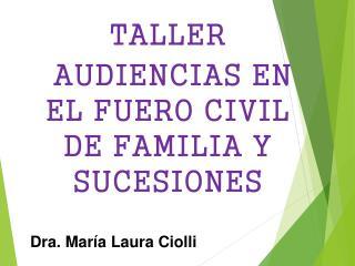 TALLER  AUDIENCIAS EN EL FUERO CIVIL DE FAMILIA Y SUCESIONES