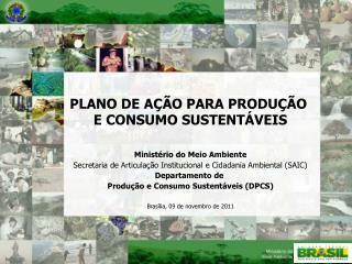 PLANO DE AÇÃO PARA PRODUÇÃO  E CONSUMO SUSTENTÁVEIS Ministério do Meio Ambiente