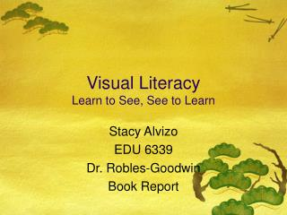 Visual Literacy Learn to See, See to Learn