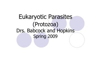 Eukaryotic Parasites  Protozoa Drs. Babcock and Hopkins Spring 2009