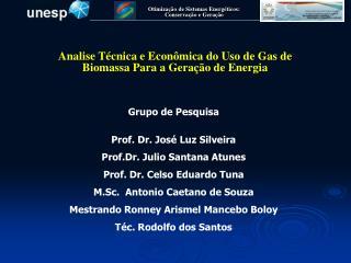 Analise Técnica e Econômica do Uso de Gas de Biomassa Para a Geração de Energia