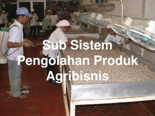 Sub Sistem Pengolahan Produk Agribisnis