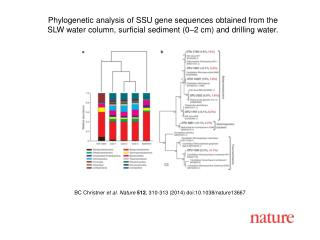 BC Christner  et al.  Nature  512 ,  310 - 313  (201 4 ) doi:10.1038/nature 13667