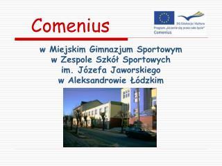 W Miejskim Gimnazjum Sportowym  w Zespole Szk l Sportowych  im. J zefa Jaworskiego  w Aleksandrowie L dzkim