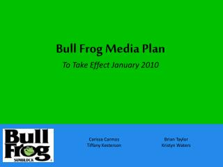 Bull Frog Media Plan To Take Effect January 2010