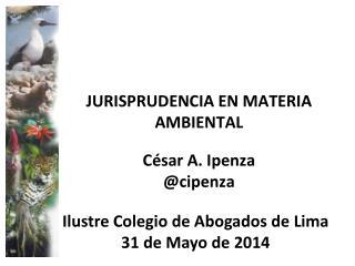 JURISPRUDENCIA EN MATERIA AMBIENTAL César A. Ipenza @ cipenza