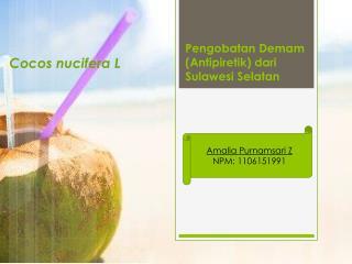 Pengobatan Demam  ( Antipiretik )  dari  Sulawesi Selatan