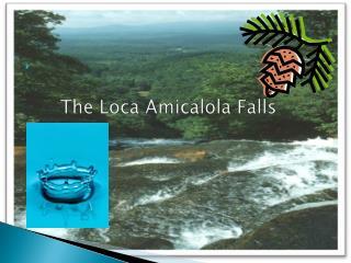 The Loca Amicalola Falls