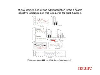 Z Xue  et al. Nature  000 , 1-4 (2014)  doi:10.1038/nature13671