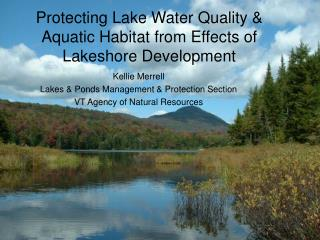 Protecting Lake Water Quality & Aquatic Habitat from Effects of Lakeshore Development