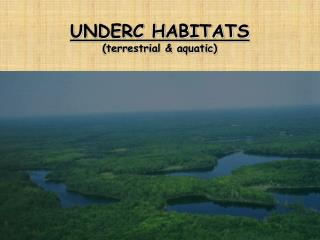 UNDERC HABITATS (terrestrial & aquatic)
