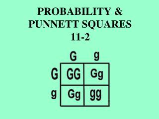 PROBABILITY  PUNNETT SQUARES 11-2