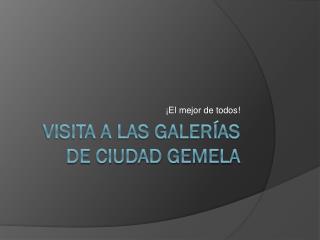 VISITA A LAS GALERÍAS DE CIUDAD GEMELA
