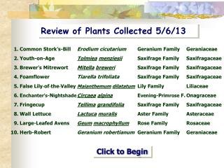 Review of Plants Collected 5/6/13