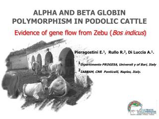 ALPHA AND BETA GLOBIN POLYMORPHISM IN PODOLIC CATTLE