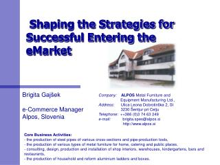 Shaping the Strategies for Successful Entering the eMarket