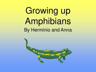 Growing up Amphibians
