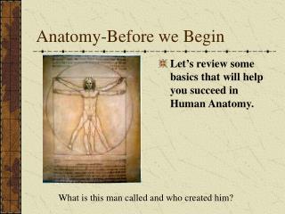 Anatomy-Before we Begin