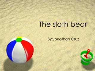 The sloth bear