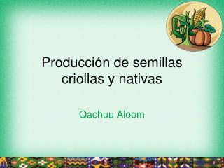 Producci�n de semillas criollas y nativas