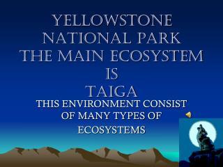 YELLOWSTONE NATIONAL PARK THE MAIN ECOSYSTEM IS TAIGA
