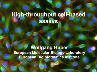 High-throughput cell-based assays