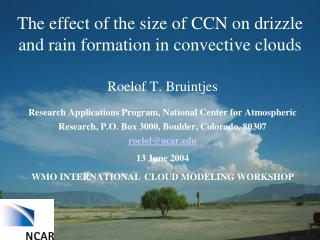 The effect of the size of CCN on drizzle and rain formation in convective clouds