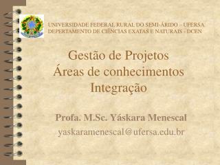 Gestão de Projetos Áreas de conhecimentos Integração