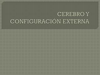 CEREBRO Y CONFIGURACIÓN EXTERNA