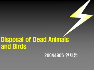 Disposal of Dead Animals and Birds