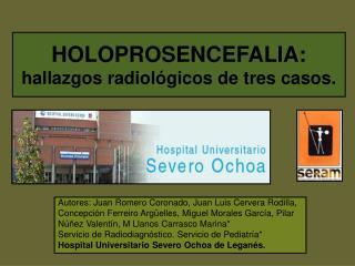 Autores: Juan Romero Coronado, Juan Luis Cervera Rodilla,