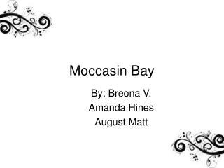 Moccasin Bay