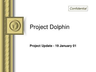 Project Dolphin