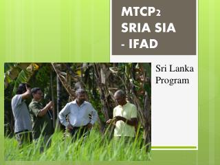 MTCP2  SRIA SIA - IFAD