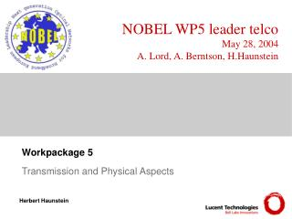 NOBEL WP5 leader telco May 28, 2004 A. Lord, A. Berntson, H.Haunstein