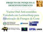 Vacina Oral Anti-cocc dica Veiculada em Lactobacillus sp para Imuniza  o de Frangos de Corte