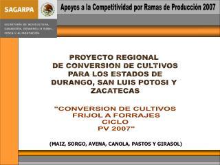 Apoyos a la Competitividad por Ramas de Producción 2007