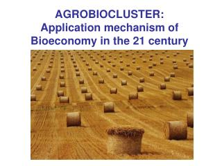 AGROBIOCLUSTER: Application mechanism of Bioeconomy in the 21 century