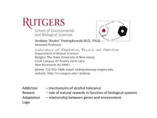 Addiction 	– mechanisms of alcohol tolerance