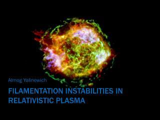 FilamenTATION  INSTABILITIES IN RELATIVISTIC PLASMA
