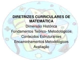DIRETRIZES CURRICULARES DE MATEMÁTICA Dimensão Histórica Fundamentos Teórico- Metodológicos