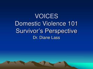 VOICES Domestic Violence 101 Survivor's Perspective