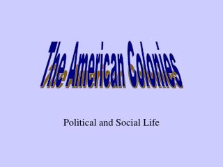 Political and Social Life